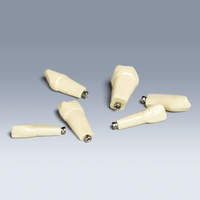 AK-6/2 ZE Pediatric Standard Replacement Teeth